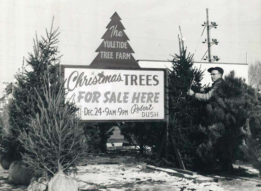 Like most family businesses, Pine Tree Barn began with a dream. - Our Story Pine Tree Barn