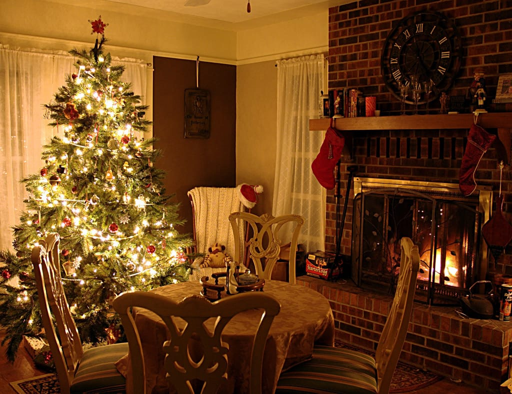 christmas tree in living room photos caring for your tree pine tree barn 24415